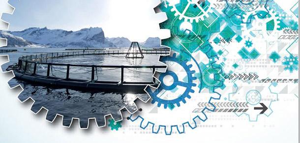 OECD: Norsk forsknings- og innovasjonspolitikk tar ikke tilstrekkelig høyde for omstillingsutfordringen