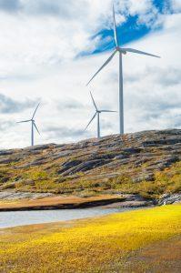 Å bygge vindmøller krever mer en vitenskapelig kvalitet. Foto: Nicola Ferrari.